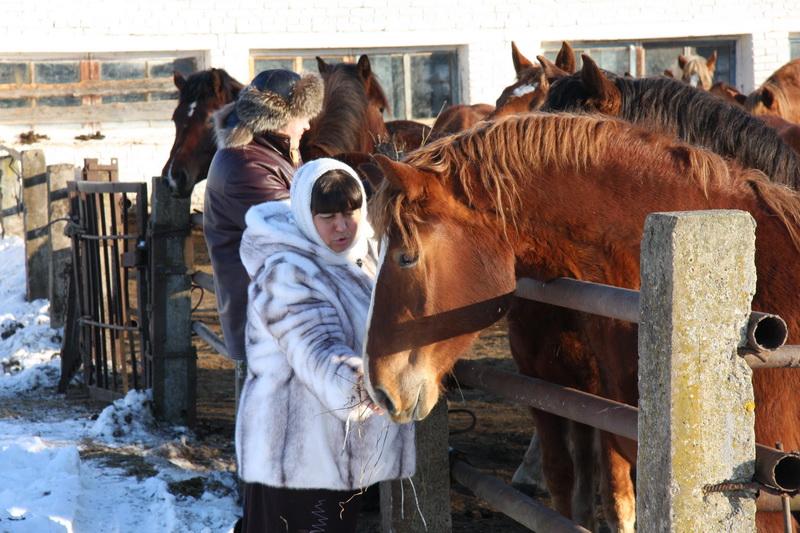 Праздник Коня. Вологодская область 2009